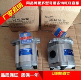 合肥长源液压齿轮泵CBHT-F310-扁左(法兰)