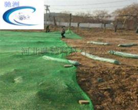 绿色防尘网-三针绿色防尘网-驰洲网业