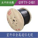 太平洋GYFTY-24B1.3 24芯室外單模光纜 層絞式 室外非金屬光纜