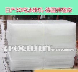 30吨大型工业冰砖机-德国弗格森创造-【月销1000