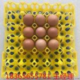 山東36枚商品蛋託 優質塑料蛋託 3枚種雞蛋託