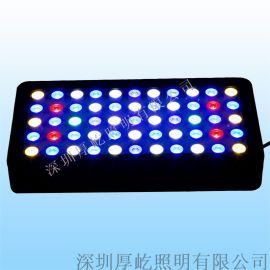 165W大功率,WIFI控制可调光多波LED水族灯