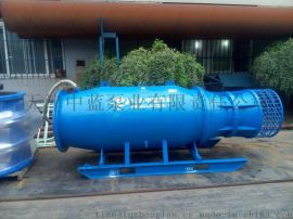 移动式轴流泵站、便携式潜水轴流泵