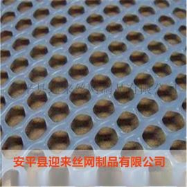 养殖塑料网 塑料围栏网 塑料网