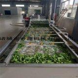 大型水浴式秋葵漂燙機 秋葵清洗漂燙生產線