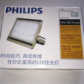 飞利浦BVP161 30W小功率LED投光灯