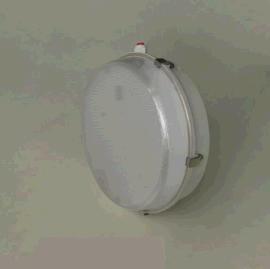 江苏飞策防爆 CCD-系列防爆防腐免维护环形荧光灯