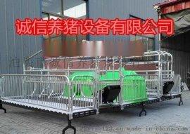 养猪设备食槽母猪产床电热板母猪分娩床保温箱齐全