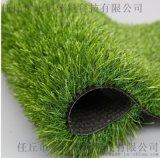 山東人造草坪廠家 塑料人工草坪地毯生產直銷