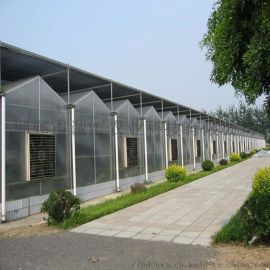 供应阳光板温室大棚,阳光板大棚,温室大棚