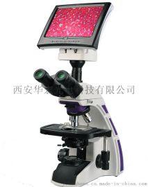 厂家直销一体式生物显微镜细菌微生物病理检验专用