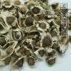 广西百色辣木籽种植基地/玉林/百色辣木籽哪里买