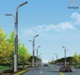 泰格LED照明灯、高低臂路灯,户外路灯、太阳能路灯