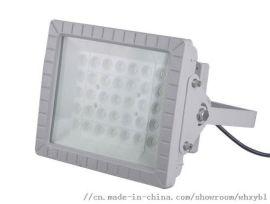 LED防爆应急灯-LED防爆应急灯厂家