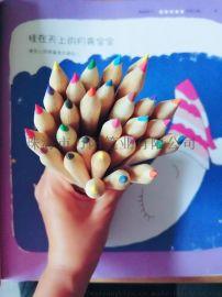 彩铅秘密绘图涂鸦花园彩色铅笔12 24 36色