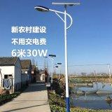 太阳能路灯6米LED新农村一体化路灯太阳能电池板高杆灯太阳能路灯