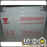 YUASA汤浅NP24-12 12V24AH铅酸免维护UPS/EPS电源太阳能蓄电池