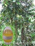 肉桂油桂皮油植物提取精油