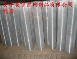 电镀电焊网现货电焊网