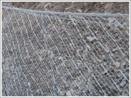 边坡防护网厂家供应RX-025型被动防护网焊接钢丝网 桥梁防护网 镀锌电焊网