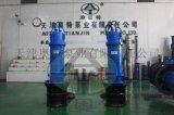6KV軸流潛水泵|高壓潛水軸流泵|大型泵站排水泵