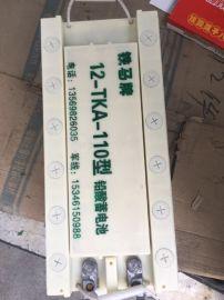 **蓄电池12-TKA-110蓄电池