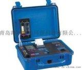內置蠕動泵自動排除冷凝水德國菲索M650攜帶型煙氣分析儀