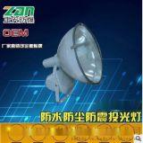 廠家直銷ZT6900B防水防塵防震投光燈