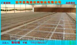 浸塑铁丝网 防腐浸塑网片现货供应钢筋焊接网片