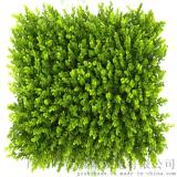 綠色地毯,假草坪,人工草,人造草,塑料草,廣告牆