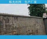 喷塑墙头防盗刺钉 监狱防爬钉 1.25米镀锌刺钉