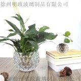 玻璃水培瓶容器銅錢草植物花盆綠蘿花瓶透明客廳插花水晶球