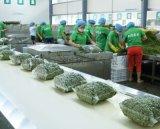 得爾潤 重慶花椒加工設備 推薦專業保鮮花椒生產線