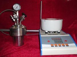 微型高压反应釜WCGF-50ML
