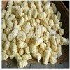 新型雙螺桿澱粉膨化機 營養米粉加工設備 食品膨化機