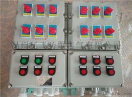 BXMD防爆电气控制箱