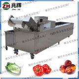 配送中心青菜蔬果氣泡清洗機 廠家自產不鏽鋼洗菜機