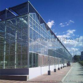 承接智能玻璃温室工程 智能温室大棚设计