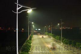 街道亮化燈具D5-30