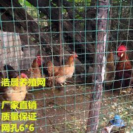 养殖用网/果园围栏网/圈玉米铁丝网/大量现货销售中