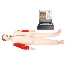 急救训练人体模型(BZ-CPR480)