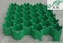 植草格 草坪垫   中山小榄杰袖土工材料有限公司