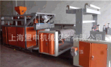 专业生产保鲜膜缠绕膜机组 流延膜缠绕膜生产设备
