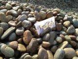 运城别墅卵石盆景石,临汾鹅卵石(垫层)滤料用途