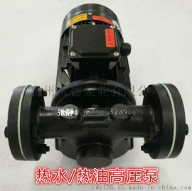 WG-30泵 高温锅炉补水泵 高压泵