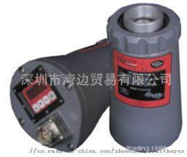 FIREYE 95DSS2-1火焰控制器