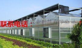 餐厅温室 温室餐厅投资建设 生态餐厅价格 生态酒店设计安装