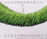 河北人造草坪厂家 仿真塑料草坪 人工草坪地毯厂家
