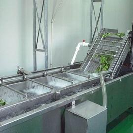 洗菜机大型果蔬清洗设备全自动多功能气泡果蔬清洗机
