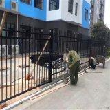 院墙锌钢护栏@锌钢护栏厂家@锌钢围墙护栏